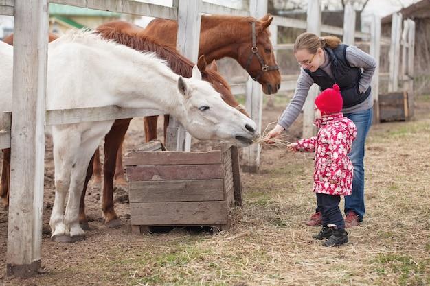 村で馬に餌をやる娘と母