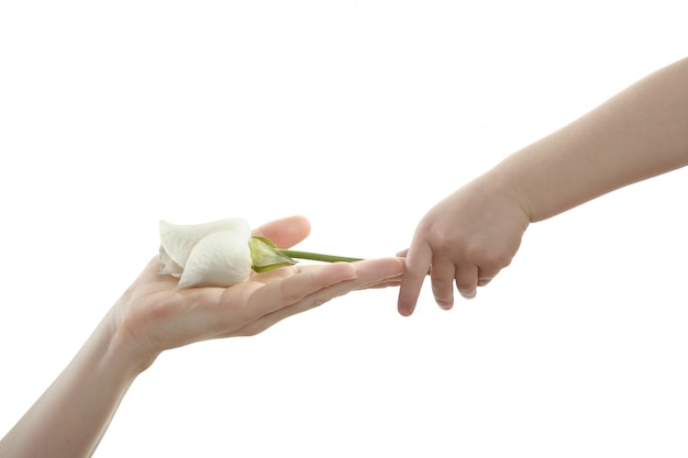Daughter, son, giving mother a white rose