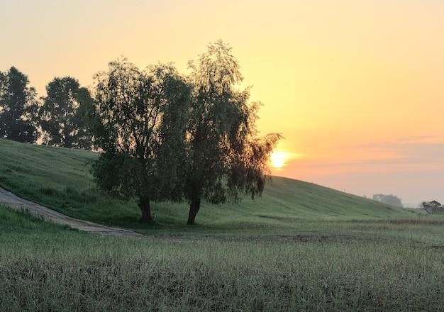 Dawn among the green hills