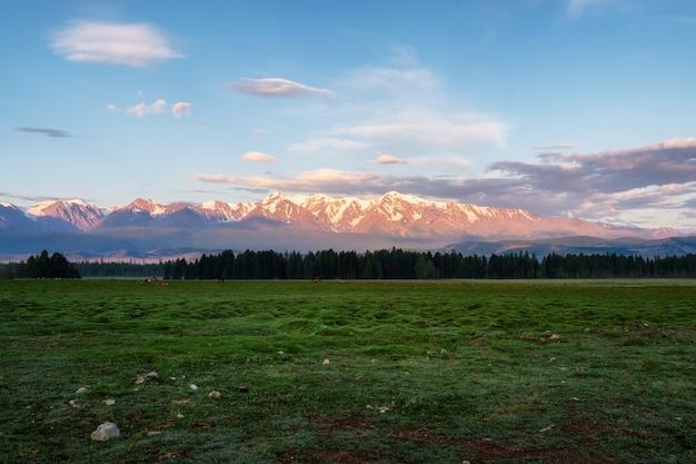Рассвет в горах. красочный пейзаж природы с закатом или восходом солнца. атмосферный пейзаж с силуэтами гор с деревьями на фоне оранжевого рассветного неба.