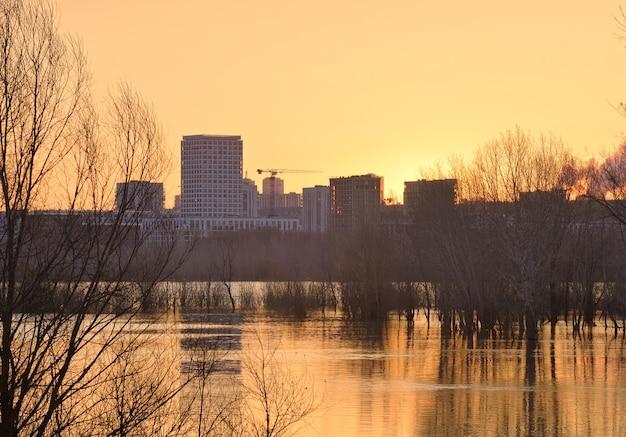 ノボシビルスクの高水域のオビ川の夜明け川の裸の木