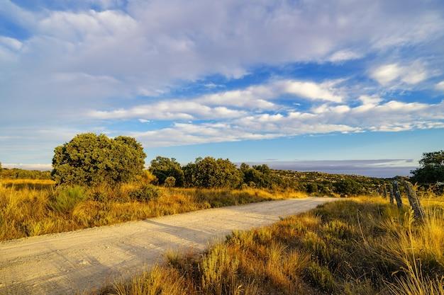 Рассветы в сельской местности над средиземноморским лесом и грунтовой дорогой.