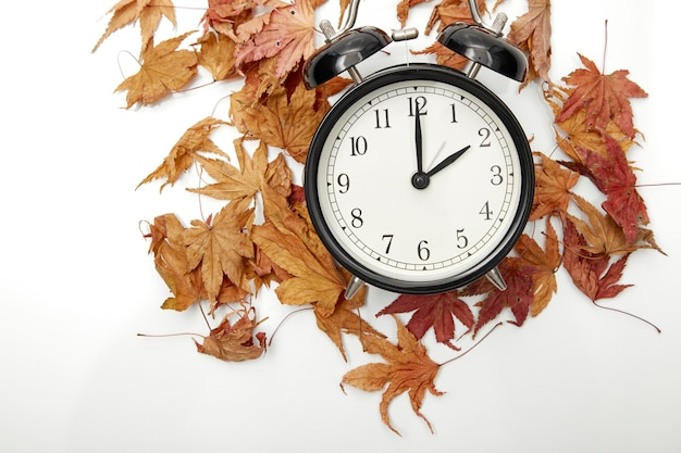 Download forex data with daylight saving