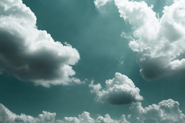 積雲のある昼間の空。空高く小鳥