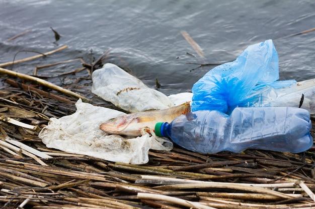 海のプラスチック製のゴミで死んだ魚。海洋生物と海洋の保護のためのコンセプト。