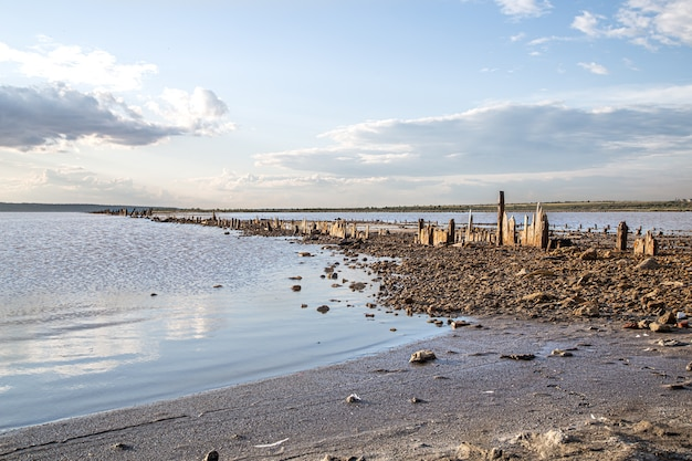 A dead lake and old salt logs peep out of the water