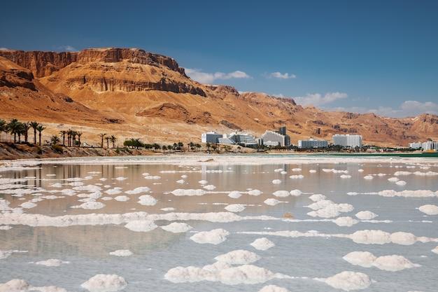 Соленый берег мертвого моря. дикая природа. тропический пейзаж.