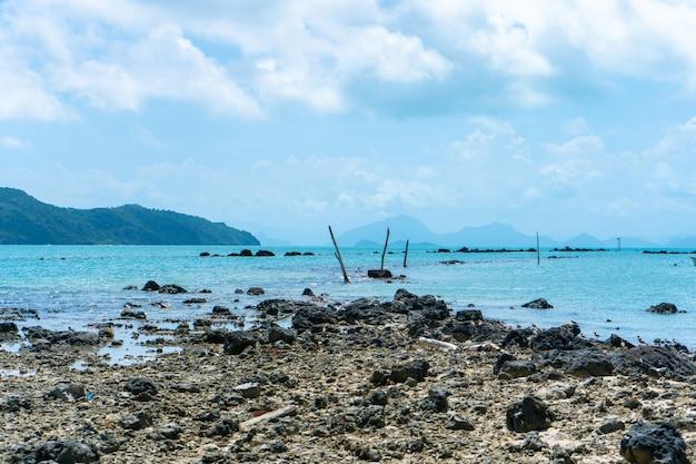 Обломки кораллов на пляже у воды. коралловый пляж.