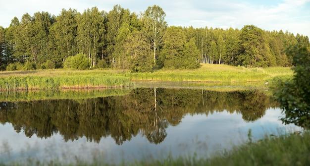 Лиственный лес отражается в водной глади озера.