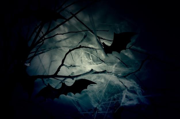 夜霞のウェブの枝にコウモリのシルエットの装飾。
