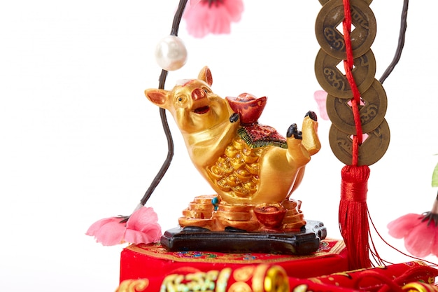 Decorate pig 2019 lunar new year