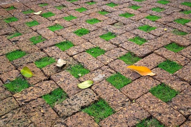 芝生の床をレンガで飾ります。