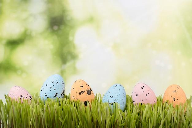 Украшенные пасхальные яйца подряд на лужайке