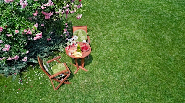 Decorated table with bread strawberry and fruits in beautiful summer rose garden aerial top view