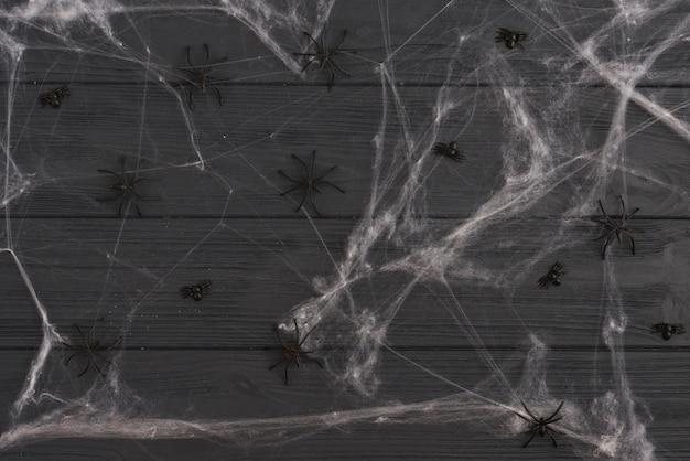 Decorating black spiders between gossamer