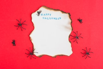 Decorating spiders around burning paper