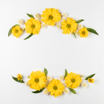 Decoration of chamomile and chrysanthemum flower isolated on white background