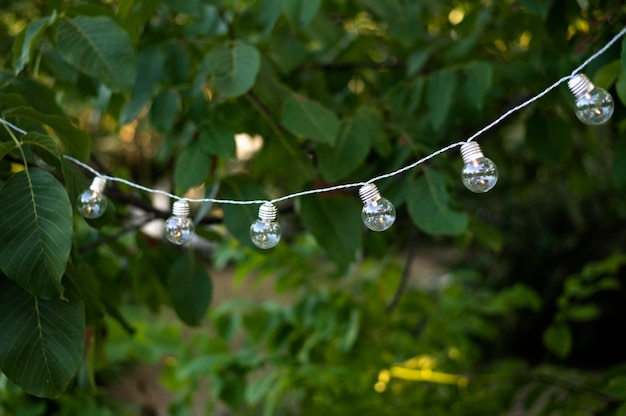 Disposizione delle lampadine decorative all'aperto
