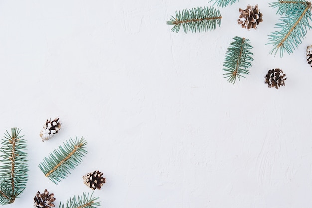 Decoration made of fir tree branches, pine cones and dried fruits on white background