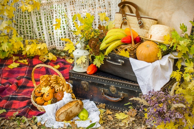 Decorations for autumn picnic in forest. retro photo in nature. autumn warm days. indian summer. rustic autumn still life. harvest or thanksgiving. autumn decor, party. lantern, bananas, pumpkin