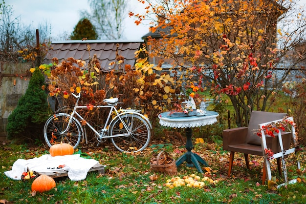 Decorations in the backyard for relaxing in the autumn garden