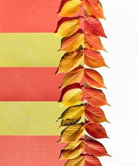 白地に黄色、オレンジ色の装飾的な秋のボーダー。レイヤードカラーペーパーと秋のオレンジの葉。
