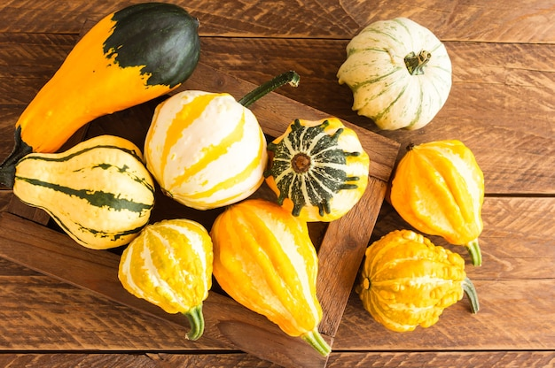 Decorative autumn pumpkins in a wooden box on the village table. top view.