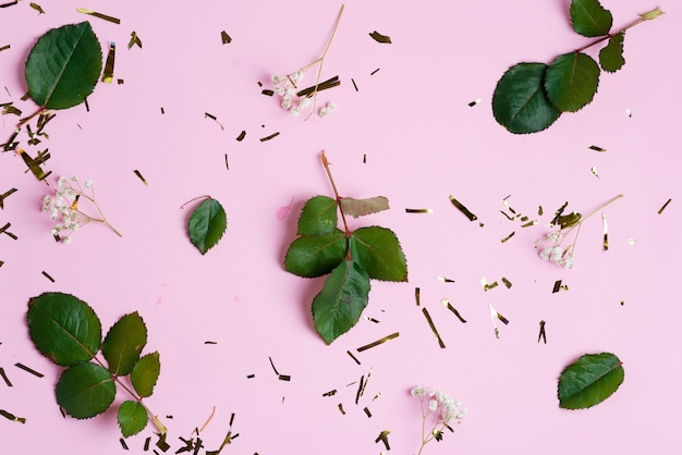 Decorative backdrop from bright confetti decoration, gypsophila flowers and green leaves on a pink background.