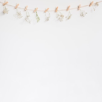 Decorative background with clothes line