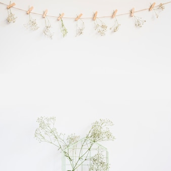 Decorative background with wildflower
