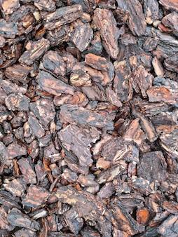 장식 나무 껍질 나무 질감 클로즈업 나무 칩
