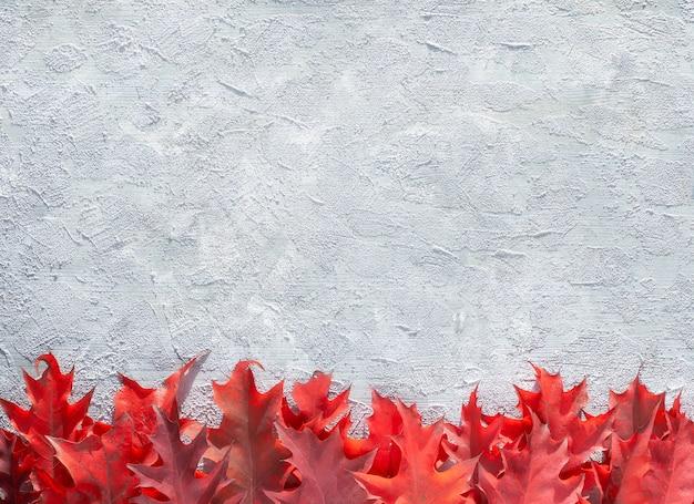 Декоративный бордюр из ярких красных дубовых листьев на текстурированном бетонном каменном фоне. натуральные безотходные осенние украшения, копировальное пространство