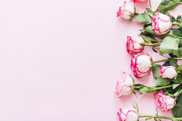 Rose colorate decorative su uno sfondo