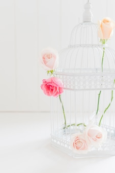 Decorative colorful roses in a cage