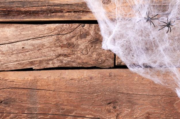 장식용 소름 끼치는 웹과 거미.