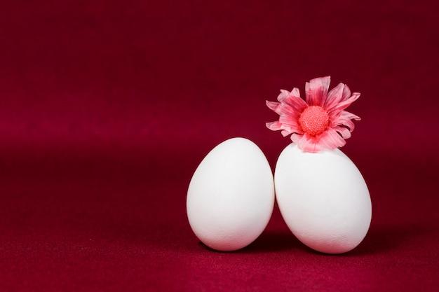 Decorative eggs on burgundy background