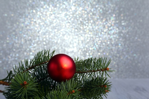 Decorative fir branches and red balls