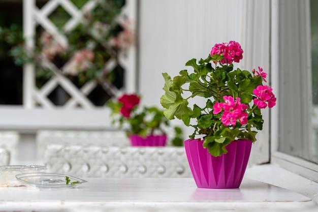 Декоративный цветочный горшок на винтажном стиле уличного кафе-стола