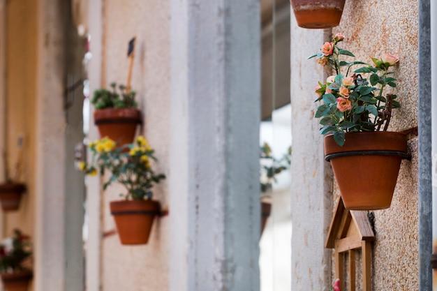Decorative flower vases on the street