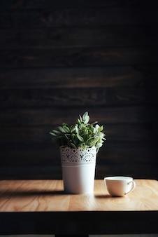 Decorative flower in white pot.