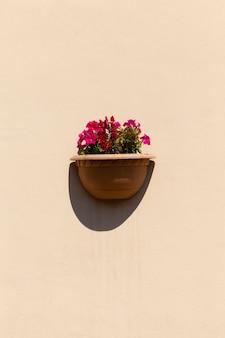 꽃병에서 자라는 장식용 꽃