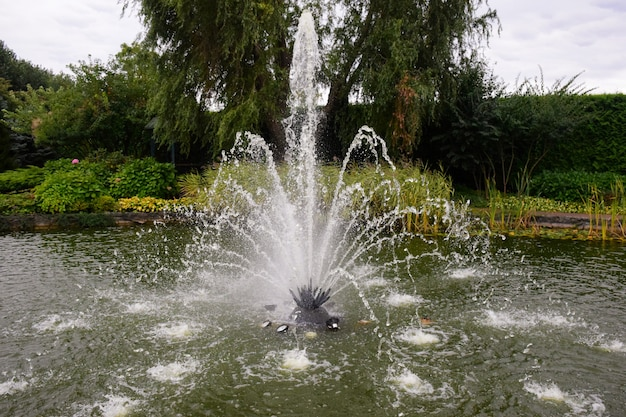 Decorative fountain on a pond with many jets against a background of trees