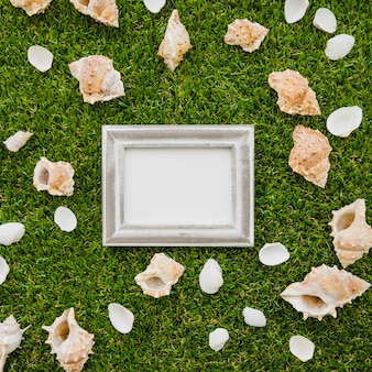 Decorative frame surrounded by seashells on grass surface