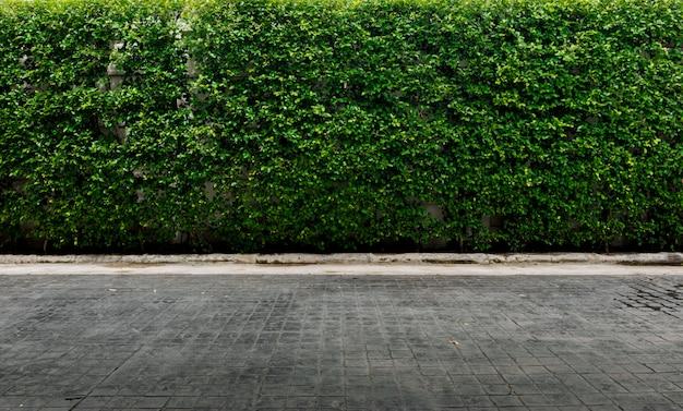 Decorative garden on a brick