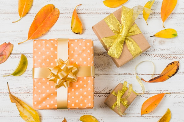 Decorative gift boxes surrounded with orange leaves on white table