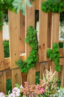 Decorative green moss on a wooden fence or wall interior design