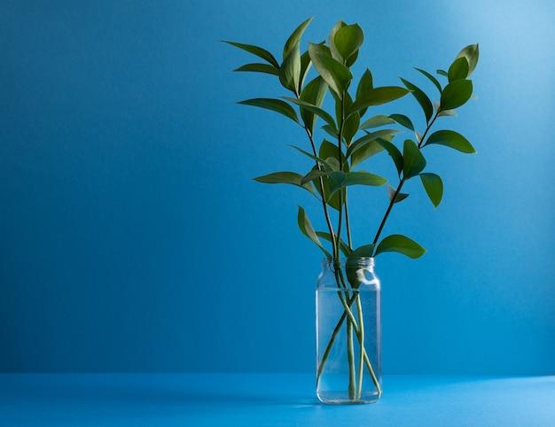 Decorative greenery in a glass jar on blue