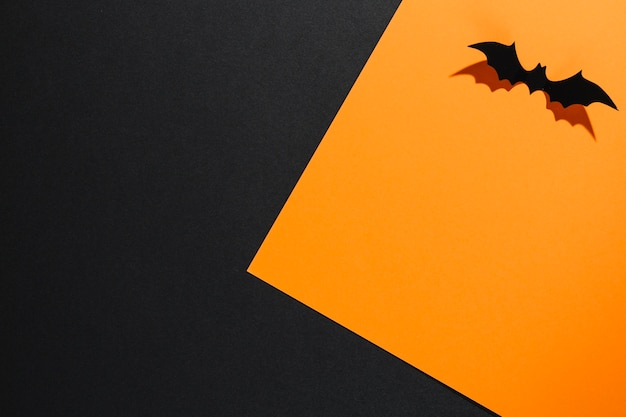Decorative halloween bat on orange sheet of paper