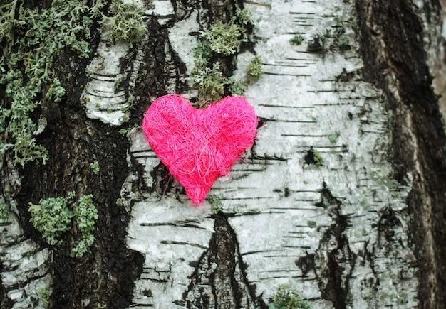 白樺の木の樹皮の装飾的な心。