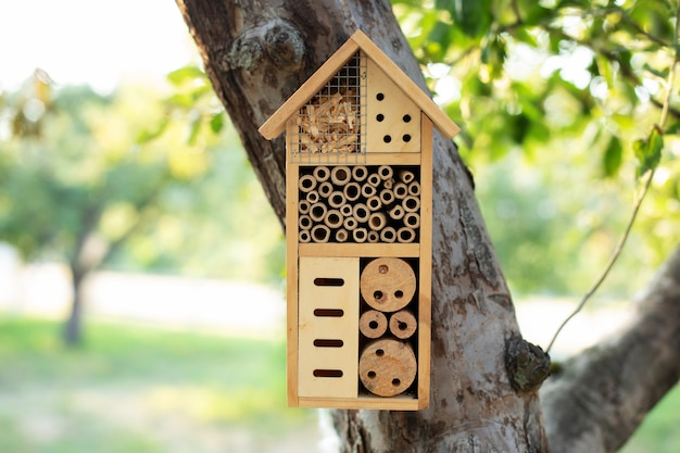 Decorative insect house in garden. bee home for hibernation, ecological gardening.
